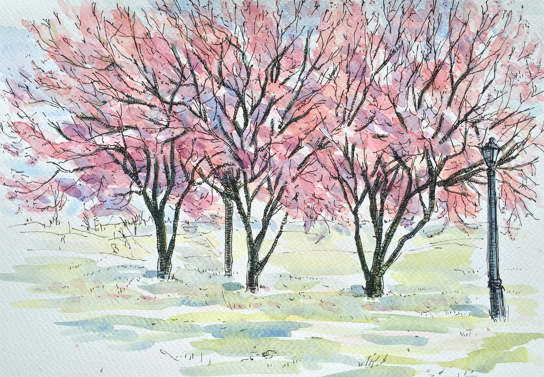 Three Trees in Blossom Study (2016)