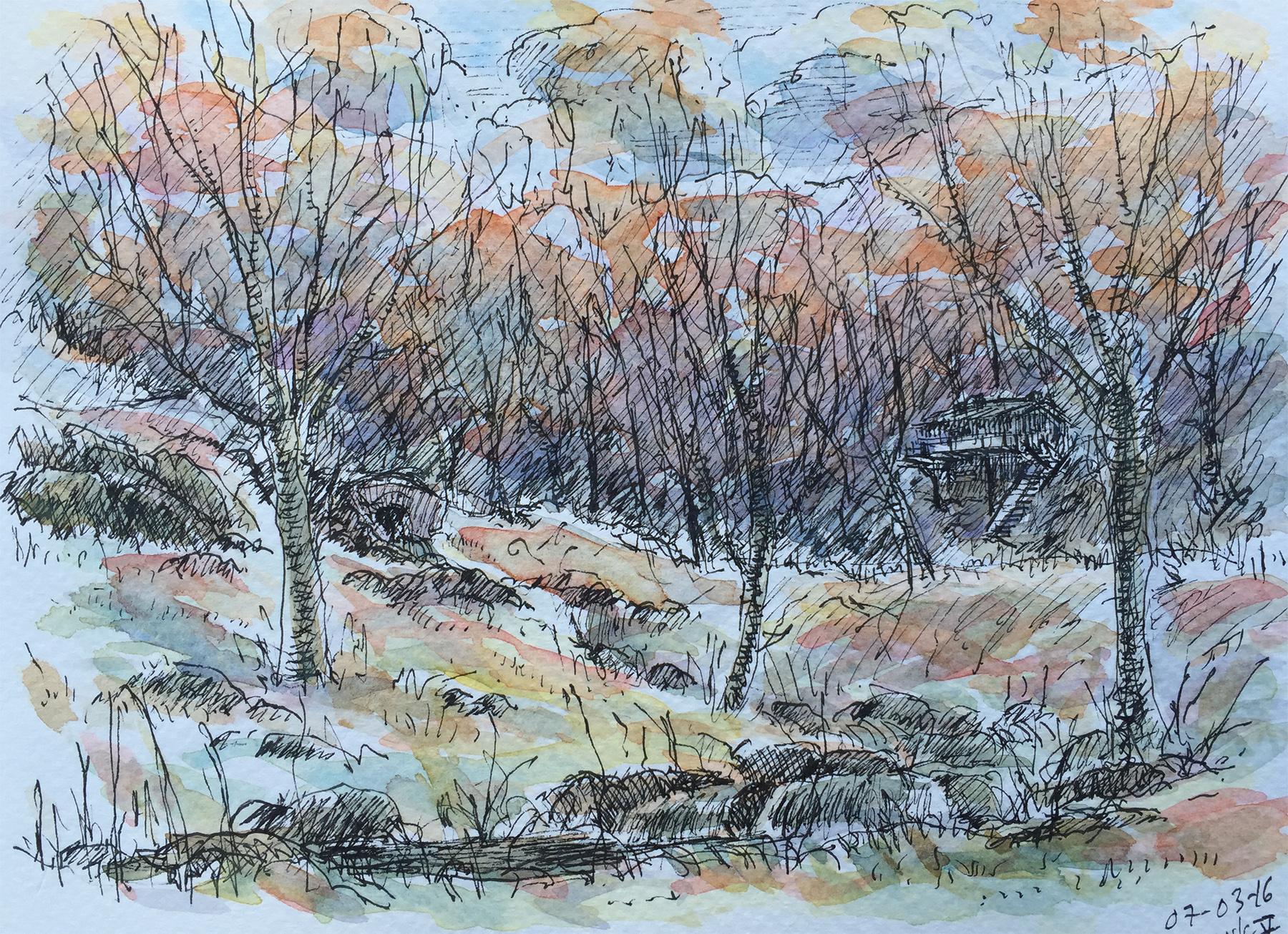 Woodland Stream Study (2016)